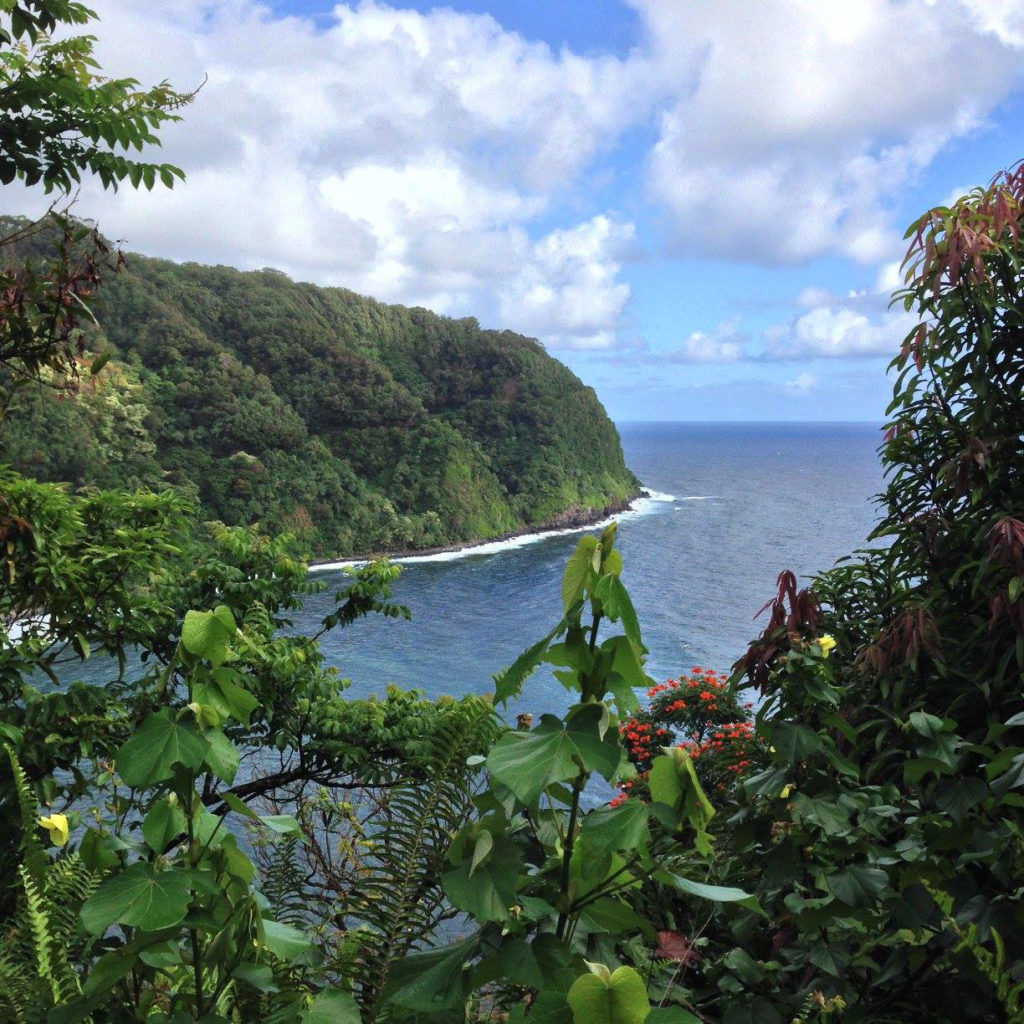 The famous Hana Highway, the Road to Hana